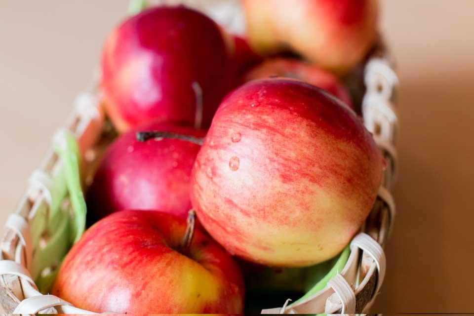 Äpfel Sorte Elster